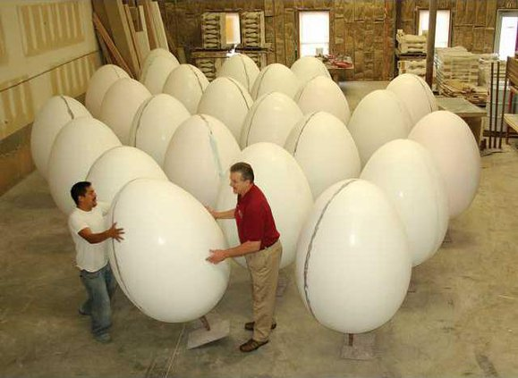 egg project 1 jd